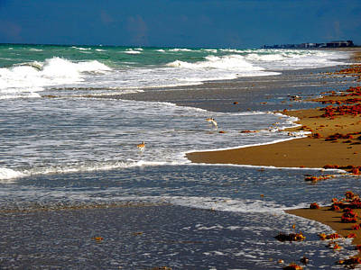 South Hutchinson Island Photograph - Jensen Beach Florida by Marilyn Holkham