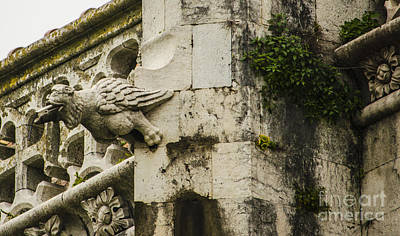 Photograph - Jeronimos Monastery Gargoyle 1 by Deborah Smolinske