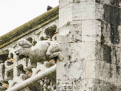 Photograph - Jeronimos Monastery Gargoyle 4 by Deborah Smolinske