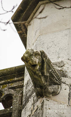 Photograph - Jeronimos Monastery Gargoyle 7 by Deborah Smolinske