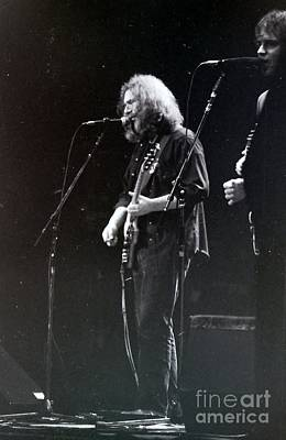 Photograph - Grateful Dead -  In And Out Of The Garden  by Susan Carella