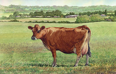 Jersey Cow Art Print by Anthony Forster