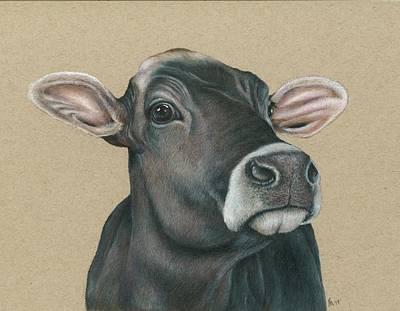 Drawing - Jersey Cow  by Fran Megerdichian