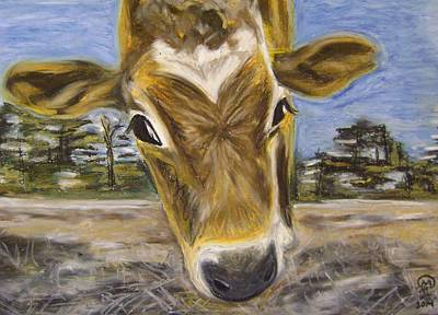 Pastel - Jersey Cow by Therese Legere
