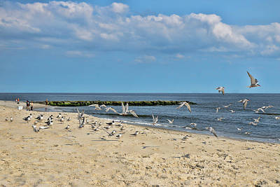 Photograph - Jersey Shore 13 by Allen Beatty