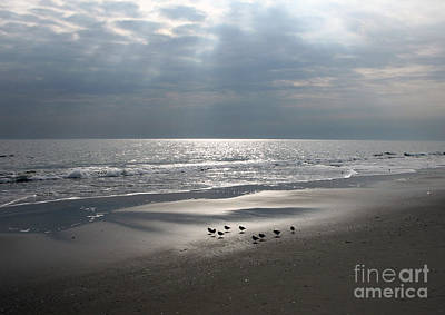 Photograph - Jersey Shore Avalon by NightVisions