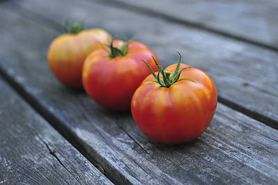 Photograph - Jersey Tomatoes  by Terry DeLuco