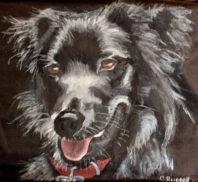 Dog Close-up Drawing - Jet by Carol Russell