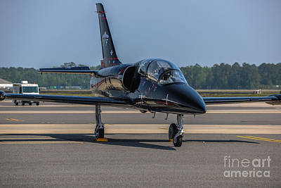 Photograph - Jet by Dale Powell