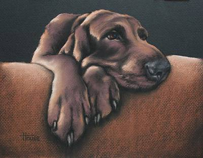 Jethro Art Print by Cynthia House