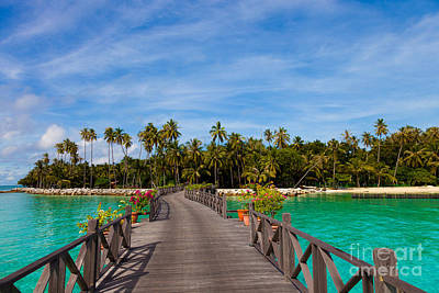 Exoticism Photograph - Jetty by Fototrav Print