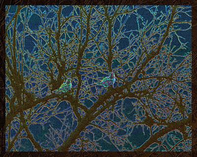 Photograph - Jeweled Birds In Winter Tree by Michele Avanti