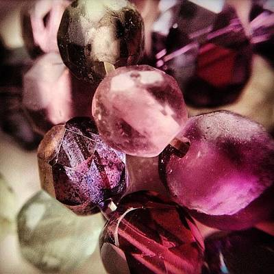 Purple Wall Art - Photograph - Jewels by Nic Squirrell
