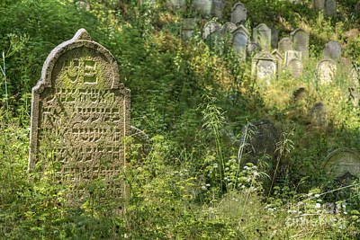 Jewish Heritage Photograph - Jewish Cemetery - Nove Sedliste by Michal Boubin
