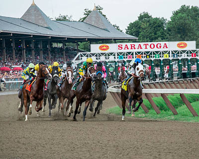 Animals Photos - Jim Dandy Stakes by William Stephen
