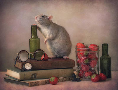 Rodent Wall Art - Photograph - Jimmy  :) by Ellen Van Deelen