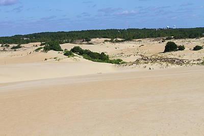 Dunes Photograph - Jockey's Ridge 17 by Cathy Lindsey