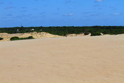 Wooden Photograph - Jockey's Ridge 22 by Cathy Lindsey