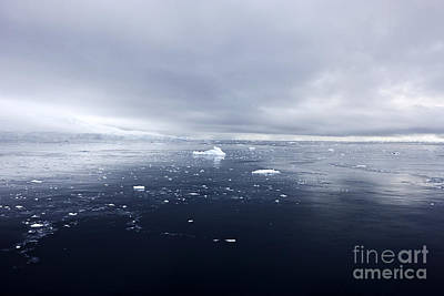 Fournier Photograph - Joe Fox Fine Art - Floating Ice And Snow Covered Landscape In Fournier Bay Antarctica by Joe Fox