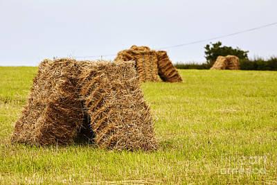 Joe Fox Fine Art - Square Hay Bales Drying In A Field At Harvest Time Art Print by Joe Fox