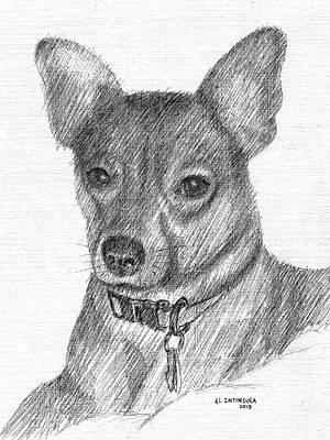 Drawing - Joey by Al Intindola