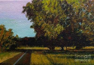 Jogging Trail At Two Rivers Park Art Print by Amber Woodrum