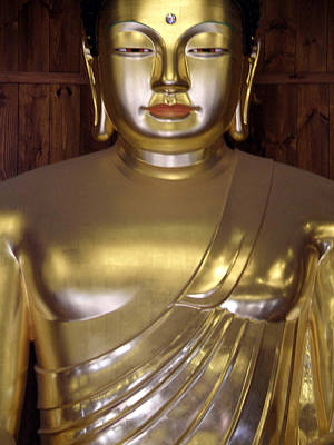 Siddharta Photograph - Jogyesa Buddha by Jean Hall