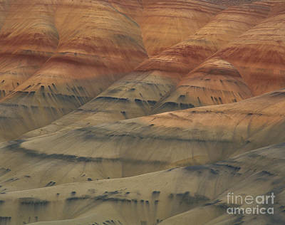 Photograph - John Day Fossil Beds by Tracy Knauer