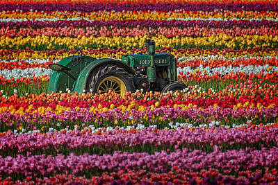 Photograph - John Deere And A Few Tulips by Wes and Dotty Weber