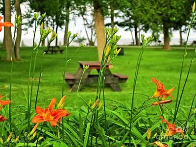 Photograph - John Henes Park In Michigan by Ms Judi