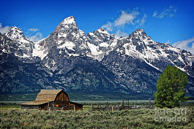 Photograph - John Moulton Barn At Mormon Row Inside Grand Teton National Park by Lincoln Rogers