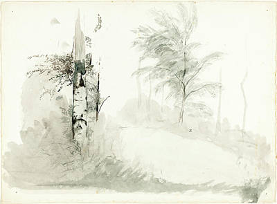 Wash Drawing - John Ruskin, Tree Study, British, 8 February 1819 - 20 by Quint Lox