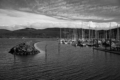 Photograph - John Wayne Marina by Kjirsten Collier