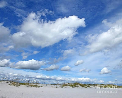 Photograph - Johnson Beach Perdido Key Fl by Lizi Beard-Ward