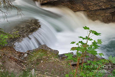 Photograph - Johnston Canyon Flow by Charles Kozierok