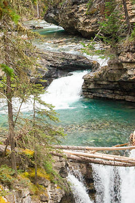 Photograph - Johnston Canyon Meandering Stream by Douglas Barnett
