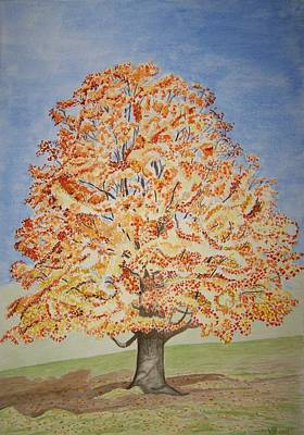 Painting - Jolanda's Maple Tree by Vera  Smith