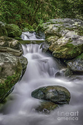 Photograph - Jones Gap Cascade by David Waldrop