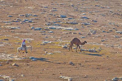 Photograph - Jordanian Desert by Don Wolf