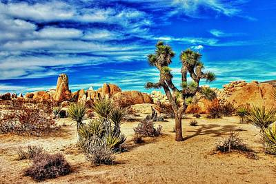 Art Print featuring the photograph Joshua Tree by Benjamin Yeager