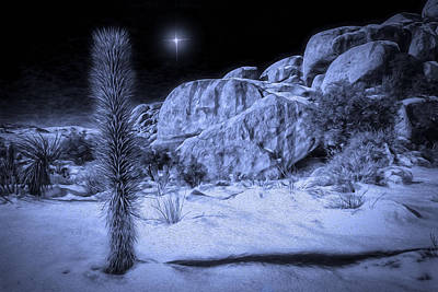 Digital Art - Joshua Tree Hidden Valley by Sandra Selle Rodriguez