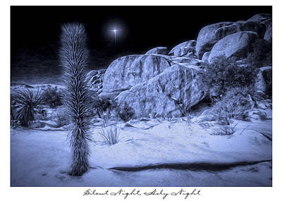 Digital Art - Joshua Tree National Park by Sandra Selle Rodriguez
