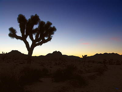 Photograph - Joshua Tree National Park Sunrise by Glenn McCarthy Art and Photography