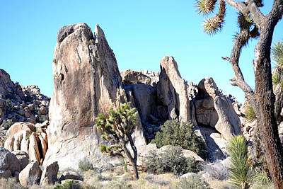 Photograph - Joshua Tree National Park - Whale Rock by rd Erickson