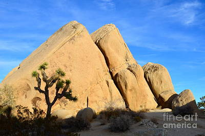 Photograph - Joshua Tree Pyramids by Johanne Peale