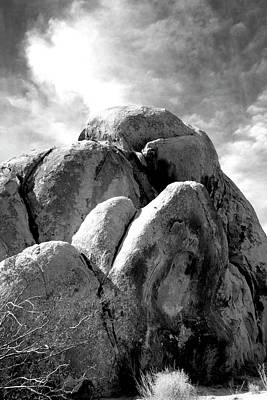 Joshua Tree Rocks Joshua Tree Art Print