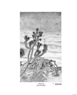 Drawing - Joshua Tree Yucca Brevifolia by Arthur Eggers