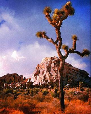 Photograph - Joshua Trees 3 by Timothy Bulone