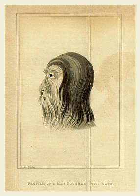 Fossil Drawing - Journal Of An Embassy From The Governor General Of India by Litz Collection