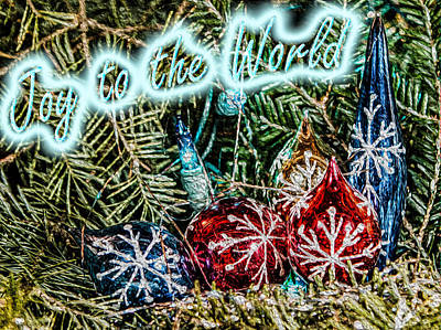 Photograph - Joy To The World by David Hahn